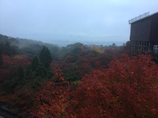 夜明け前の清水寺